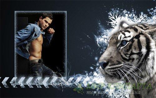 Рамка psd - Абстракция и тигр