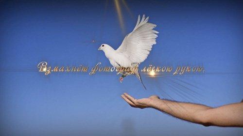 Футаж - На Крыльях Любви
