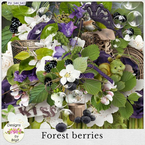 Скрап-набор Forest berries