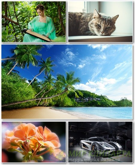 Best HD Wallpapers Pack №1297