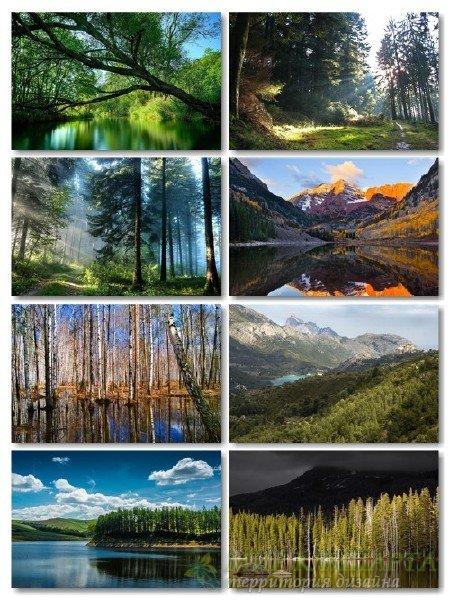 Ландшафты природы в фотографиях отличного качества выпуск 158