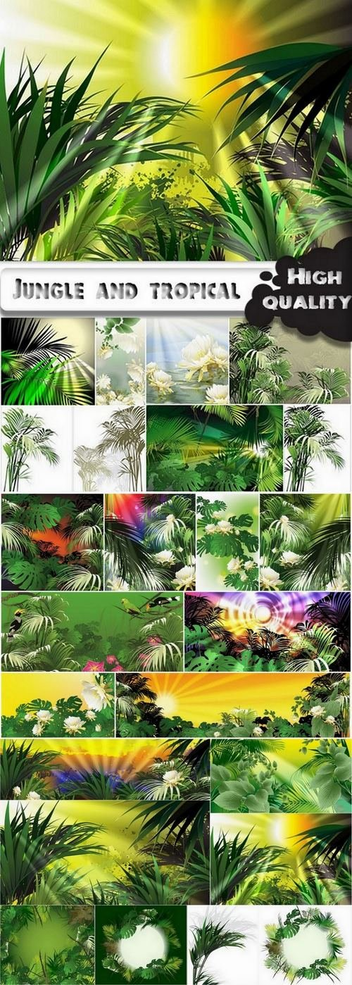 Jungle and tropical illustration in vector from stock - 25 Eps