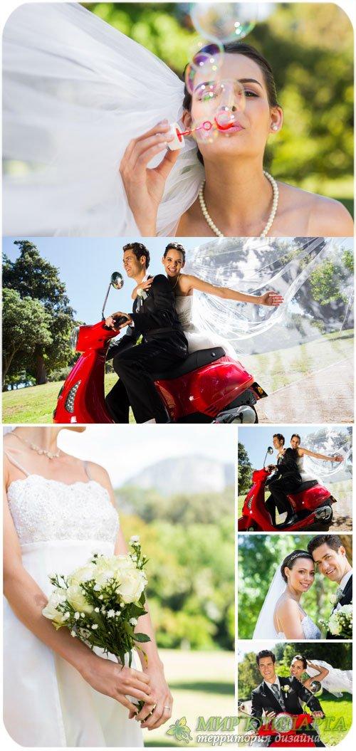 Счастливые жених и невеста / Happy bride and groom - Stock photo