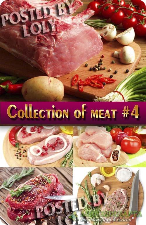 Еда. Мега коллекция. Мясо #4 - Растровый клипарт