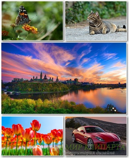 Best HD Wallpapers Pack №1309
