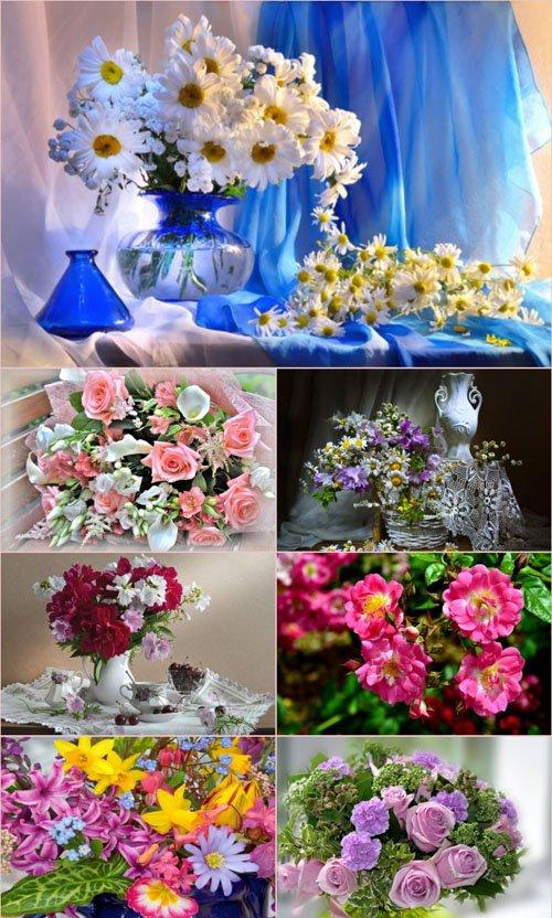 Обои для рабочего стола красивые цветы (Часть 14)