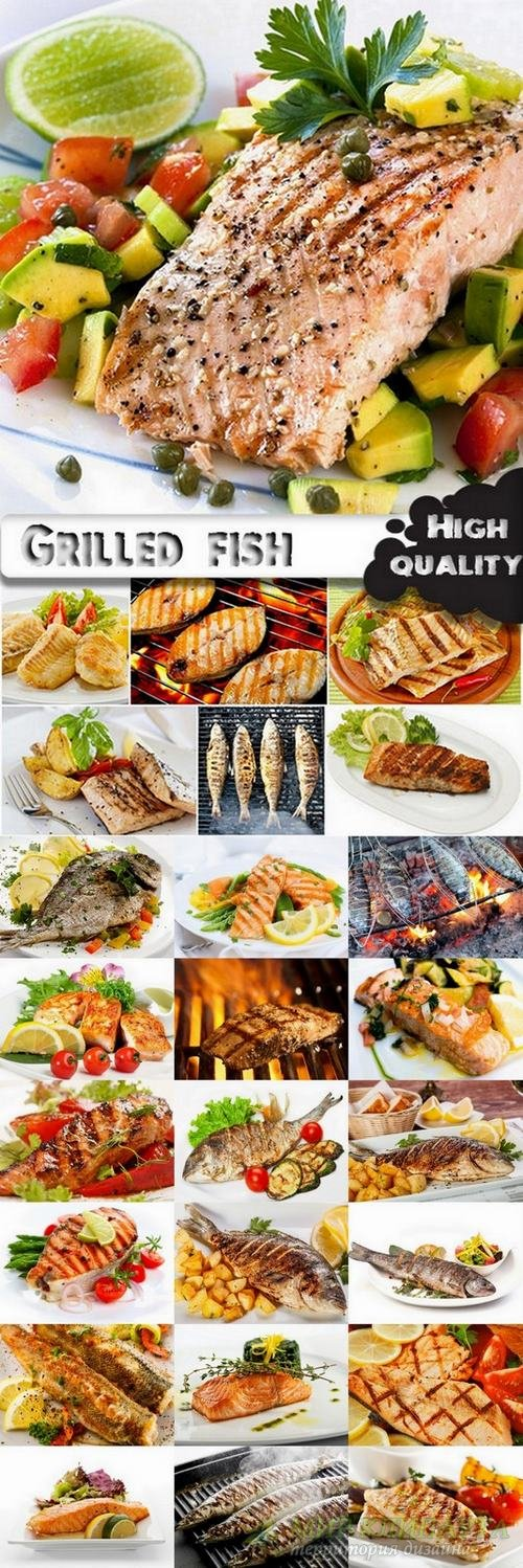 Fish Dishes and grilled fish stock images - 25 HQ Jpg