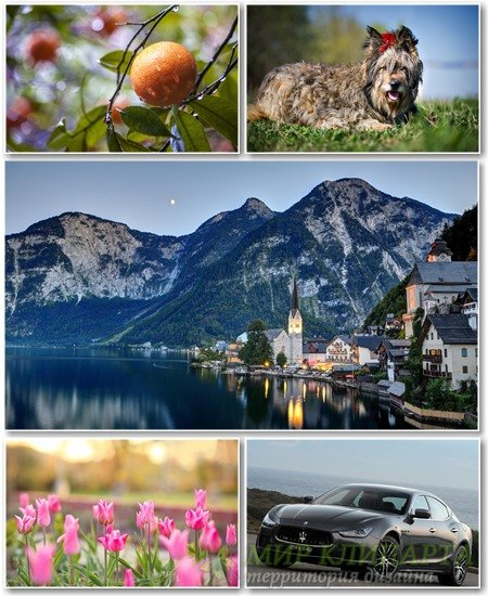 Best HD Wallpapers Pack №1313