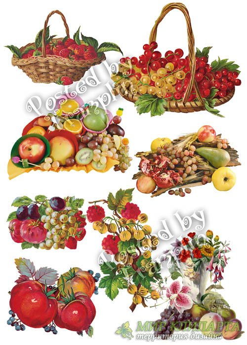 Ягоды и фрукты на прозрачном фоне
