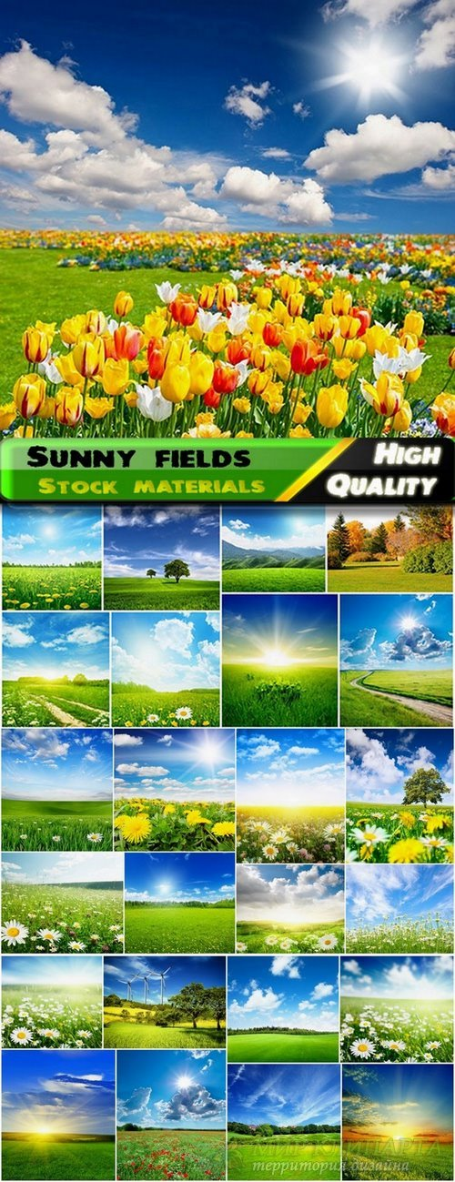 Beautiful sunny fields and landscapes Stock images - 25 HQ Jpg