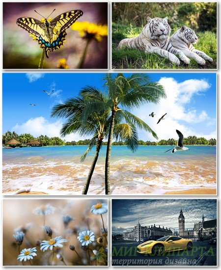 Best HD Wallpapers Pack №1330