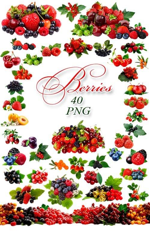 Ягоды - Клипарт на прозрачном фоне / Berries