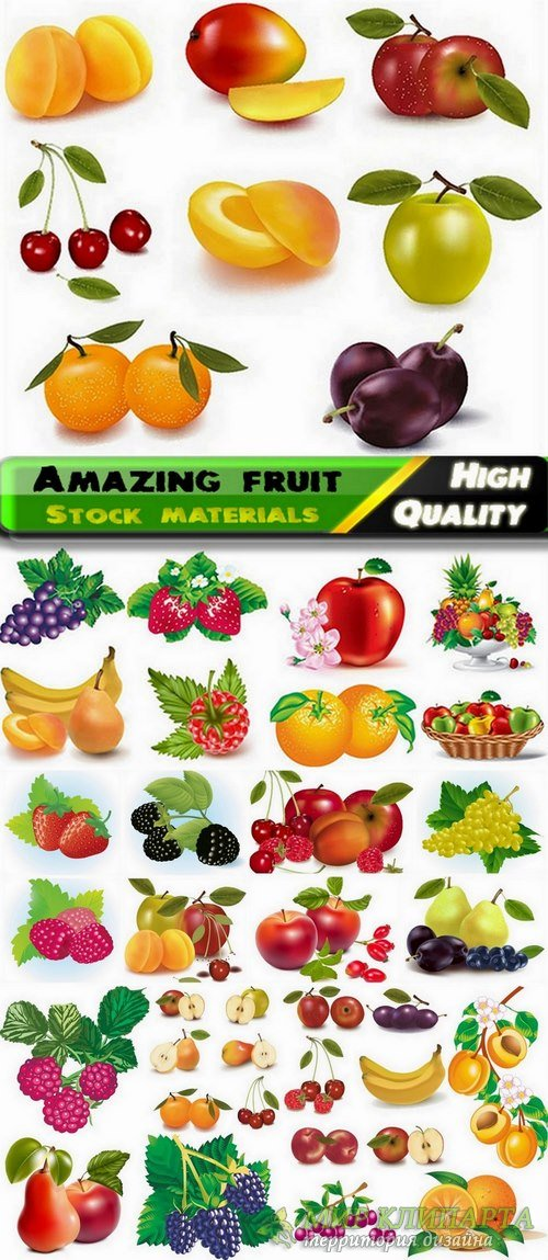 Amazing fruit in vector from stock - 25 Eps