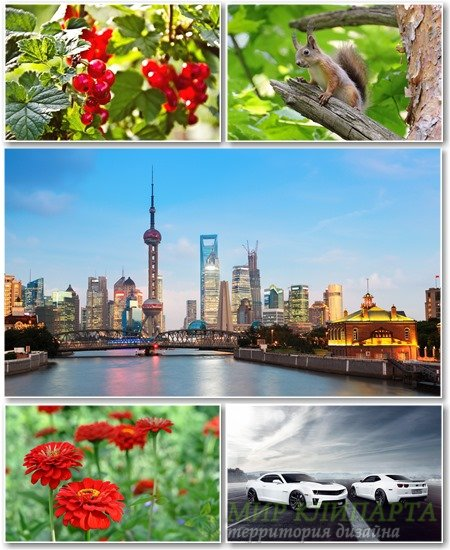 Best HD Wallpapers Pack №1331