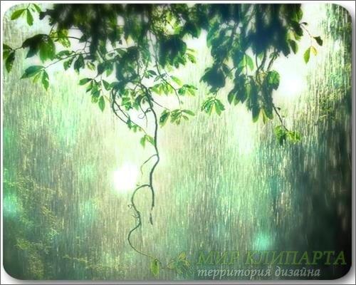 Rainy Dream - Видео обои для рабочего стола