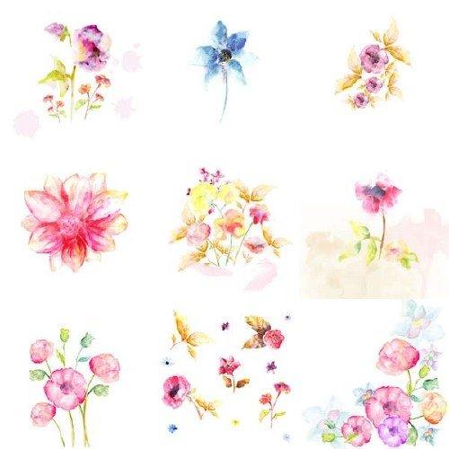 Красивые акварельные цветы в векторном исполнении