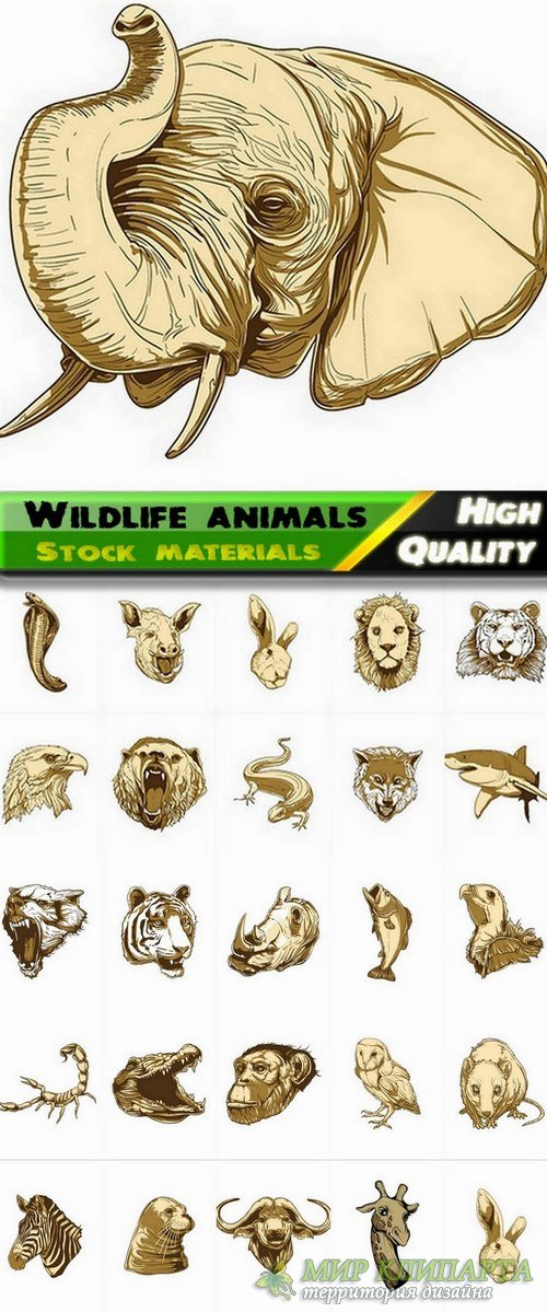 Set of vector wildlife animals from stock - 25 Eps