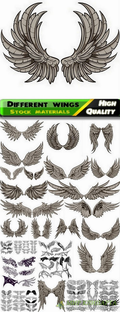 Different wings in vector set from stock - 25 Eps