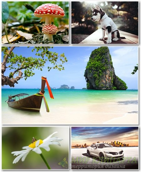 Best HD Wallpapers Pack №1342