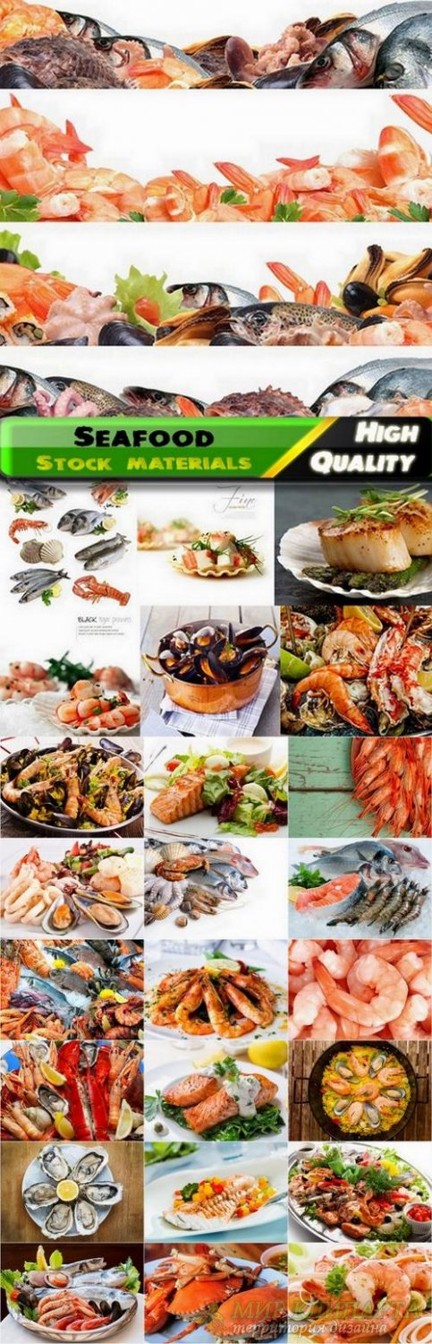 Seafood Stock Images - 25 HQ Jpg