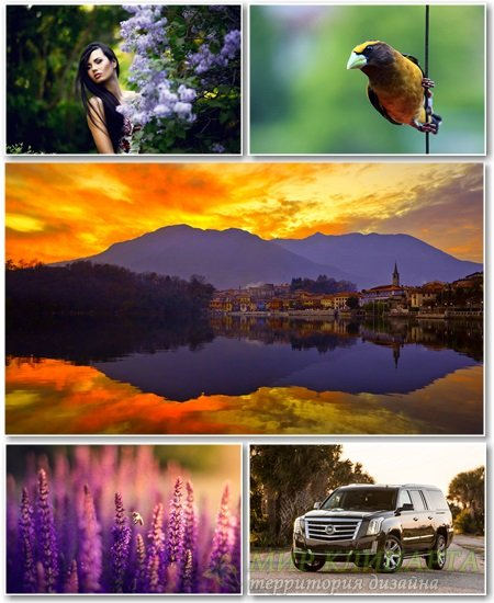 Best HD Wallpapers Pack №1347