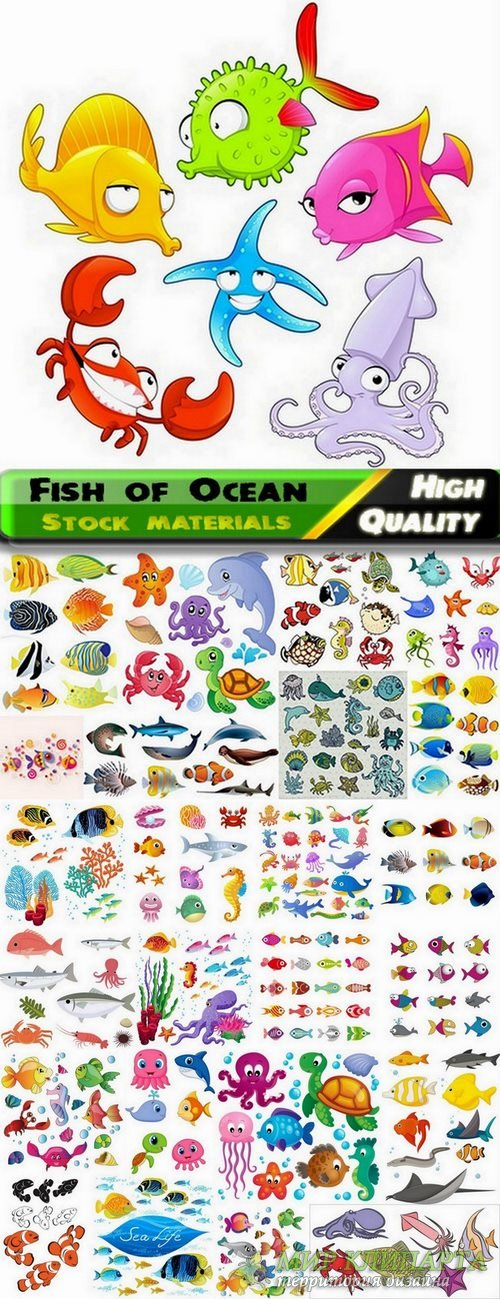 Fish of Ocean  in vector from stock - 25 Eps