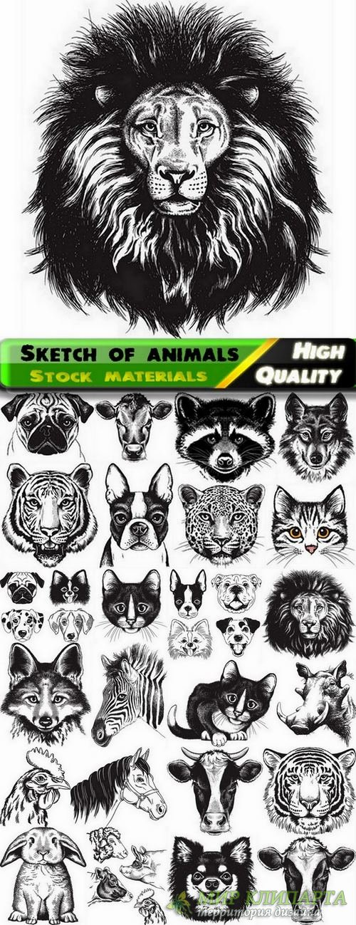 Sketch of animals in vector from stock - 25 Eps