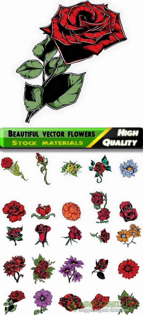 Beautiful vector flowers from stock - 25 Eps