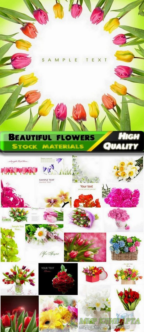 Different Beautiful flowers Stock images kit - 25 HQ Jpg