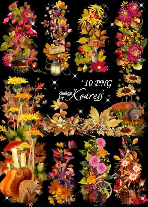 Набор осенних кластеров и бордюров для дизайна с листьями, цветами, грибами ...
