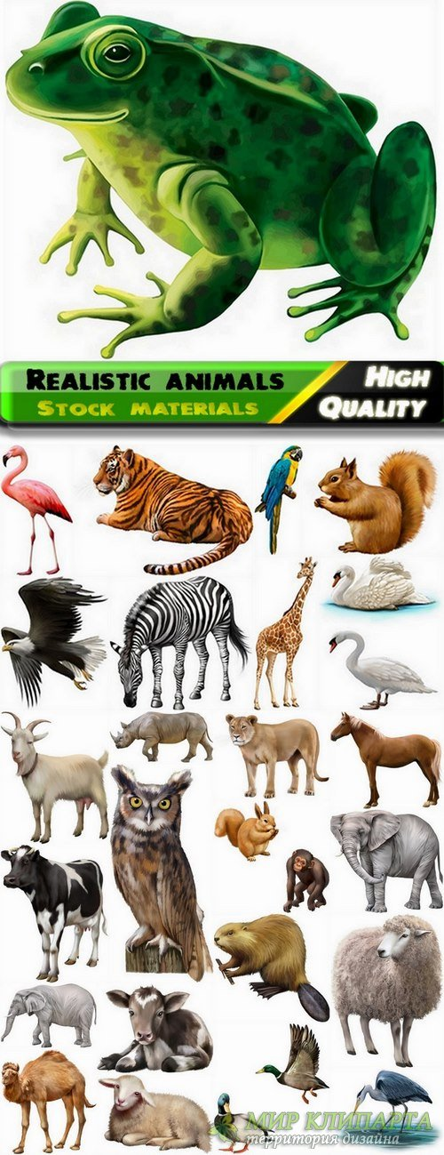 Different realistic animals in vector from stock - 25 Eps