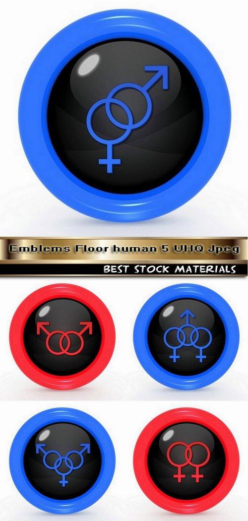 Emblems Floor human 5 UHQ Jpeg