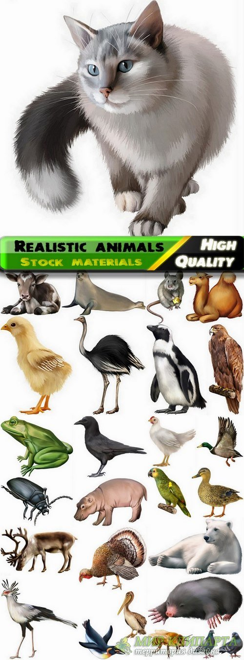 Different realistic animals in vector from stock #2 - 25 Eps