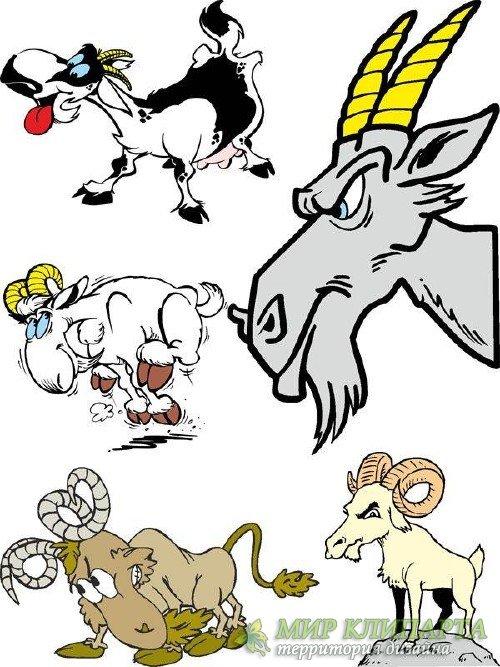 Козы и козлы (подборка векторных отрисовок)