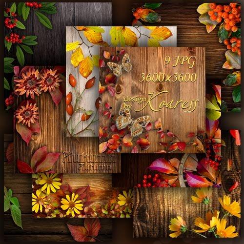 Набор фонов для дизайна с цветами, ягодами, листьями и другими атрибутами о ...