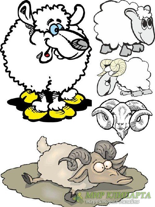 Овцы и бараны (подборка векторных отрисовок)