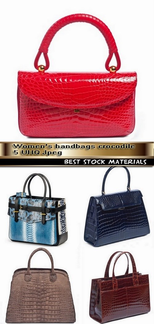 Women's handbags crocodile 5 UHQ Jpeg