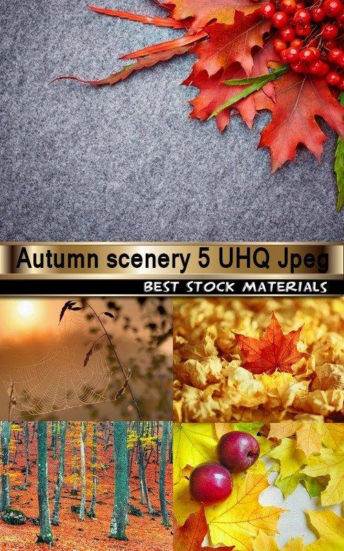 Autumn scenery 5 UHQ Jpeg
