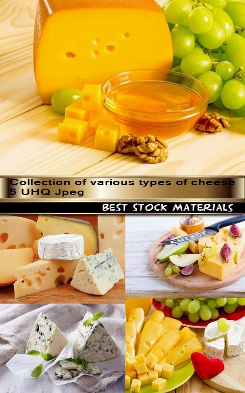Collection of various types of cheese 5 UHQ Jpeg