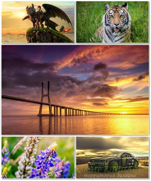 Best HD Wallpapers Pack №1381