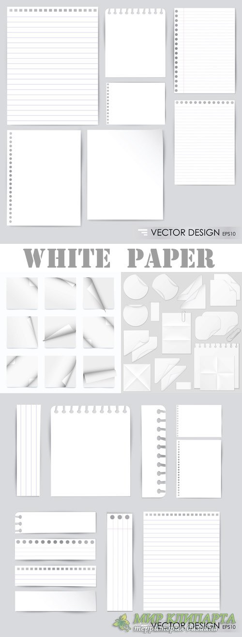White plain paper vector