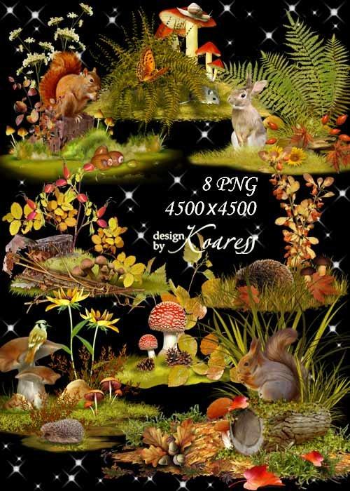 Осенние композиции для дизайна с цветами, ягодами, листьями, грибами, обита ...