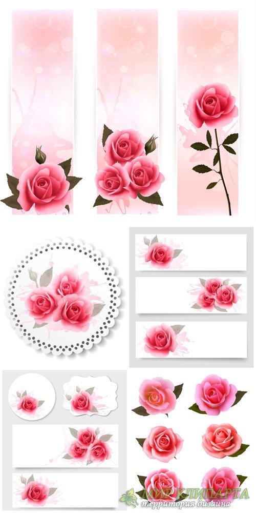 Розы, этикетки и баннеры в векторе / Roses, labels and banners vector