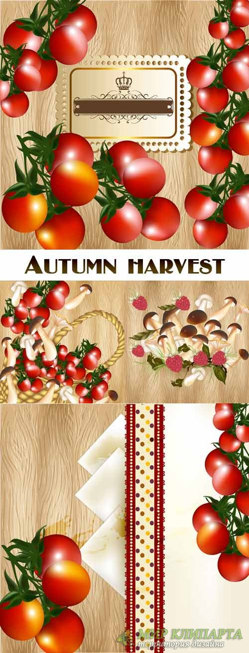 Autumn harvest on a wooden background