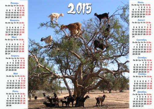 Календарь на 2015 год - Веселые козы