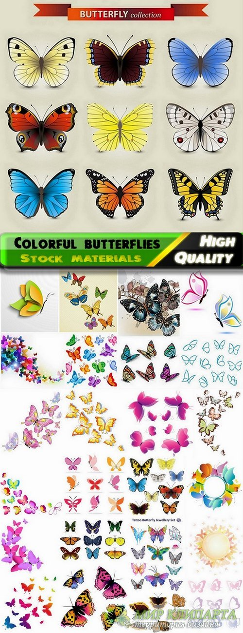 Different colorful vector butterflies from stock - 25 Eps