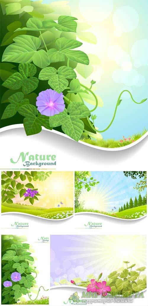 Природные фоны, векторные фоны с цветами / Natural backgrounds