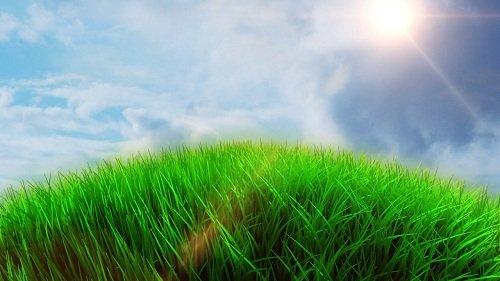 Видео заставка - Зеленая планета