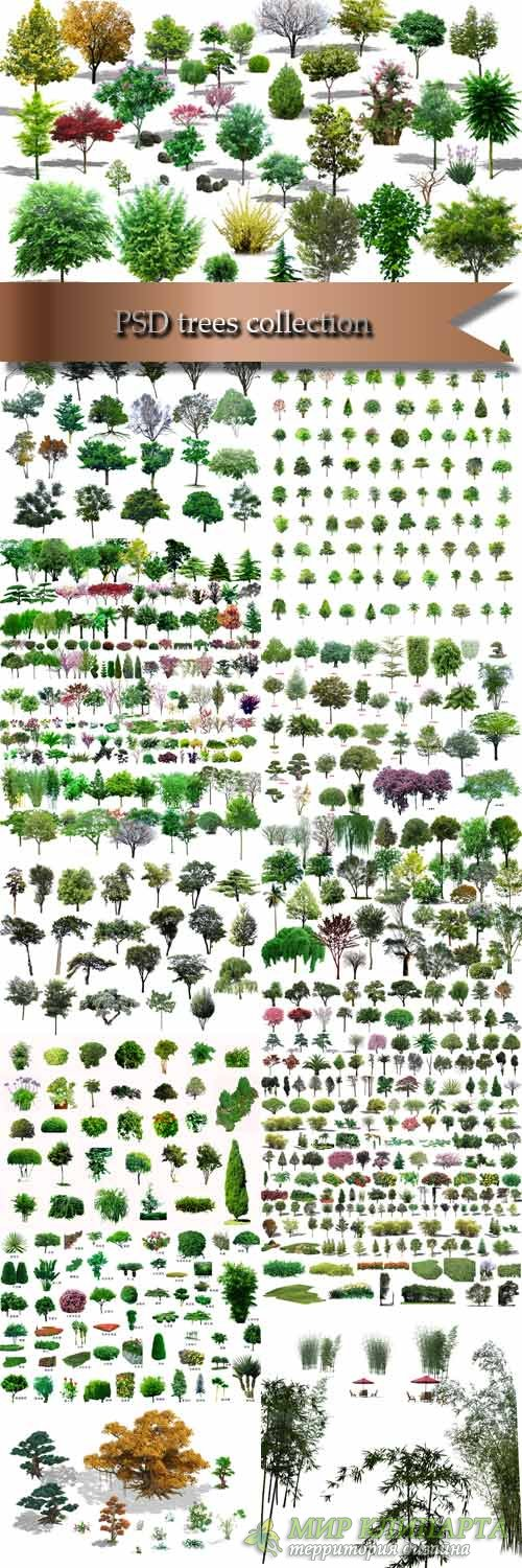 PSD trees collection
