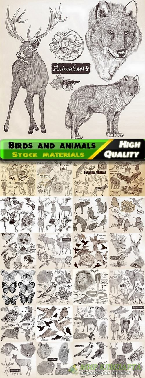 Hand drawing birds and animals in vector from stock - 25 Eps